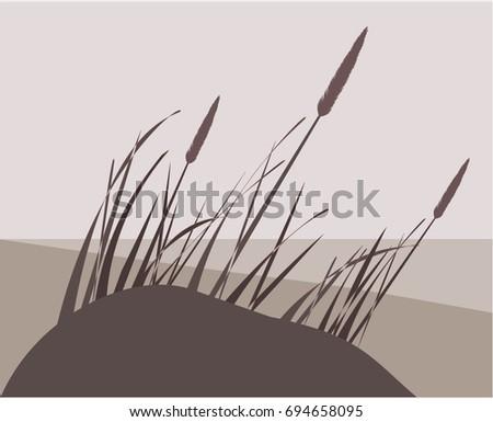 dune  grass  sea