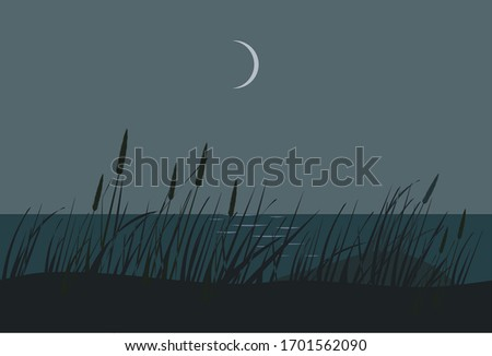 dunes  seacoast in the night