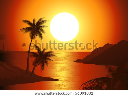 dusk on the beach  vector