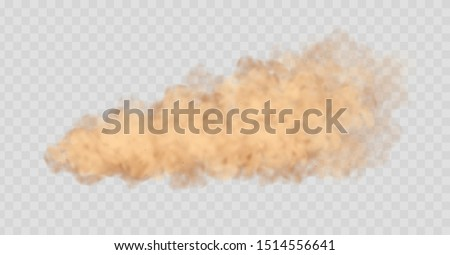 Dust cloud isolated on transparent background. Sand storm, beige powder explosion, desert wind concept. Realistic vector illustration.