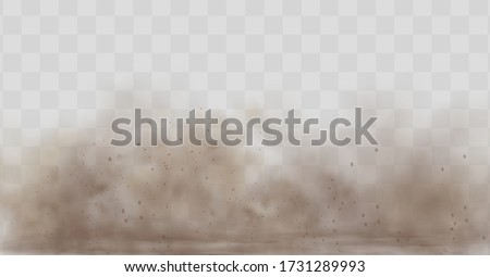 Dust cloud with particles with dirt,cigarette smoke, smog, soil and sand  particles. Realistic vector isolated on transparent background. Concept house cleaning, air pollution,big explosion.