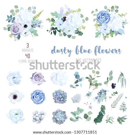 Dusty blue, pale purple rose, white hydrangea, ranunculus, iris, echeveria succulent, flowers,greenery and eucalyptus,berry, juniper big vector set.Trendy pastel color collection.Isolated and editable