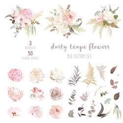 Dusty pink and ivory beige rose, pale hydrangea, peony flower, fern, dahlia, ranunculus, protea, fall leaf big vector collection. Floral pastel watercolor style wedding  bouquet. Isolated and editable