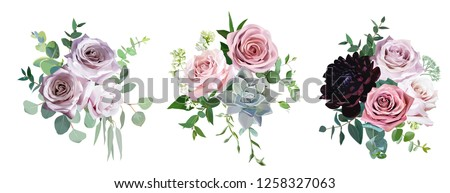 Dusty pink and mauve antique rose, pale flowers vector design wedding bouquets. Eucalyptus, dark burgundy dahlia, succulent, greenery. Floral pastel style border.All elements are isolated and editable