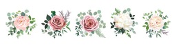 Dusty pink blush, white and creamy rose flowers vector design wedding bouquets. Eucalyptus, greenery. Floral pastel watercolor style. Blooming spring floral card. Elements are isolated and editable