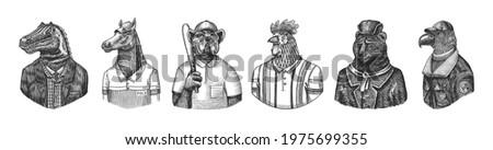 Eagle aviator pilot. Rooster tennis player Bear in Russian fur coat and hat. Dog bulldog baseball player. Dinosaur tyrex gentleman. Horse polo player. Fashion animal character. Hand drawn sketch.