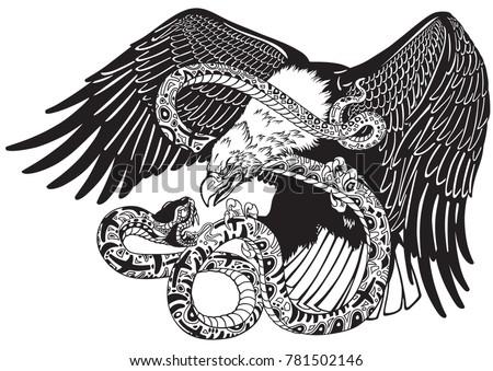 eagle battling a snake serpent
