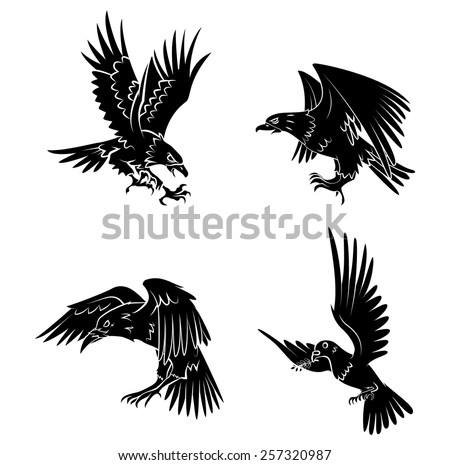 eagle dove and raven