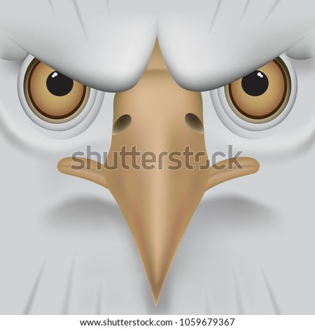 eagle face  cartoon drawing