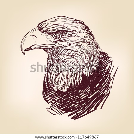 Eagle - hand drawn  vector illustration  isolated