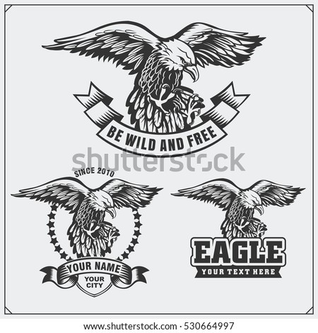 Eagle heraldry coat of arms. Labels, emblems and design elements for sport club.