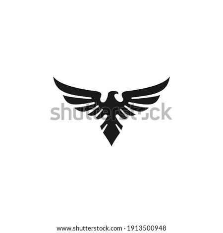 eagle logo vector and icon Foto stock ©