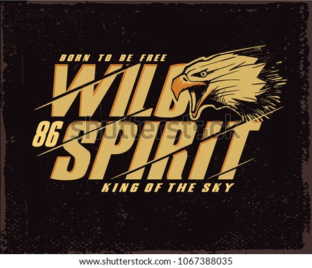 Eagle. Tee graphic. Drawing wild eagle