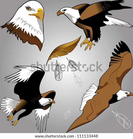 eagles - stock vector