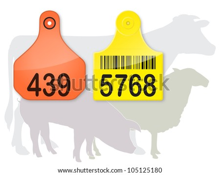 ear tags   farm animals vector