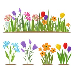 Early spring forest and garden flowers isolated on white vector set. Illustration of nature flower spring and summer in garden