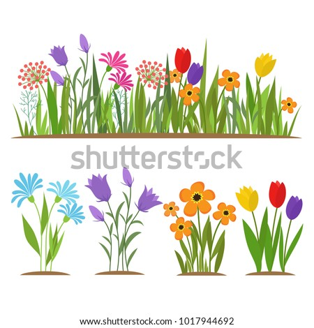 Early spring forest and garden flowers isolated on white vector set. Illustration of nature flower spring and summer in garden #1017944692