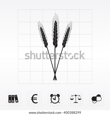 Ears of Wheat, Barley or Rye vector visual graphic icons, ideal for bread packaging, beer labels etc.