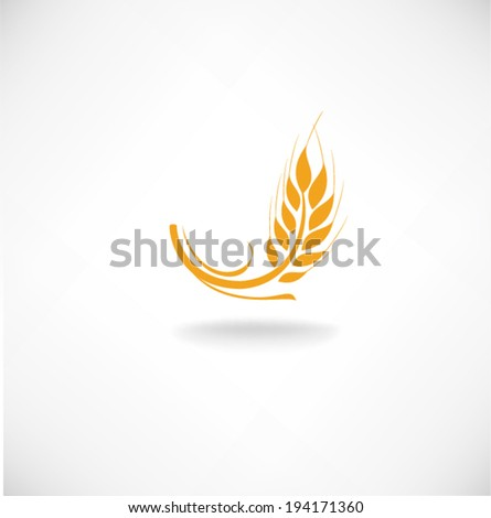 Ears of wheat in front of white background Vector
