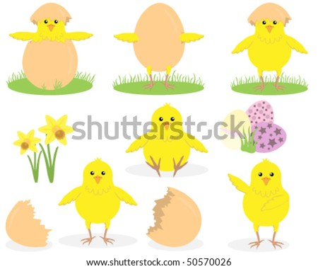 Easter Chick Collection. Each individually grouped.