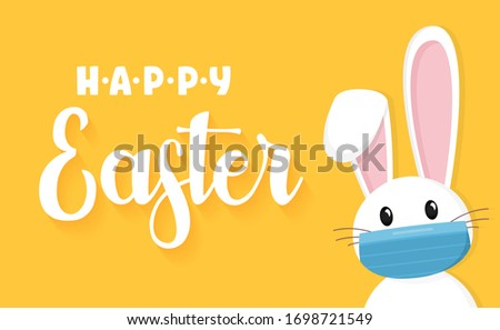 easter rabbit  easter bunny and