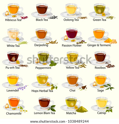 easy to edit vector illustration of different variety of herbal and medicinal Tea