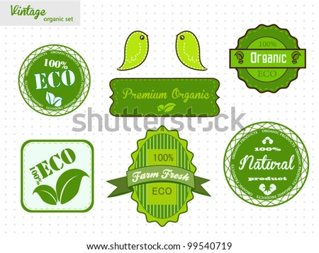 Eco And Organic Labels Set