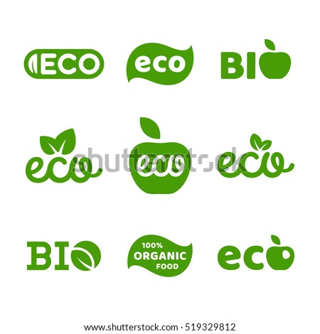the importance of eco friendly life style