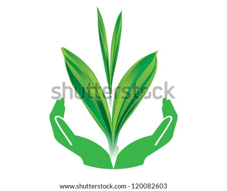 Eco green leaf with hand concept vector