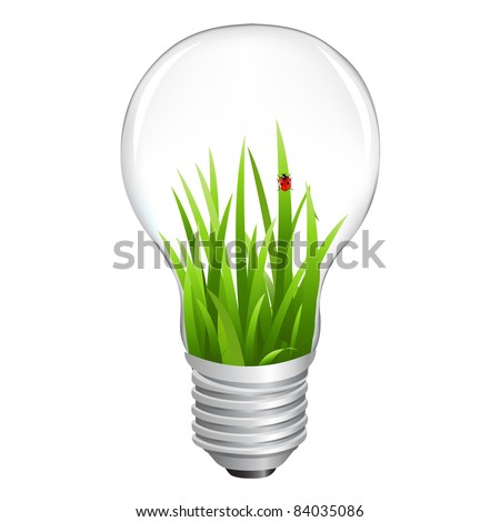 Eco Lamp With Grass, Isolated On White Background, Vector Illustration