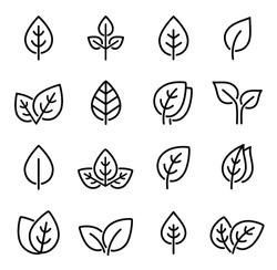 eco set of black line leaf icons on white background