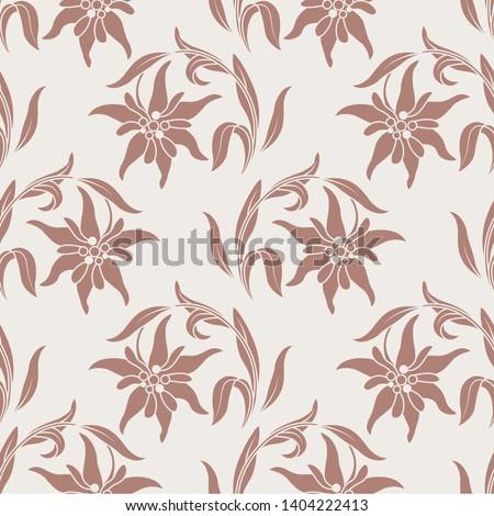 edelweiss botanical pattern