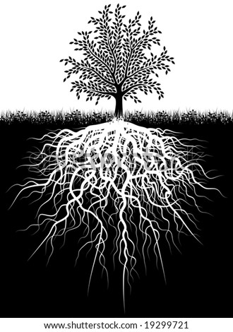 Editable vector illustration of a tree and its roots
