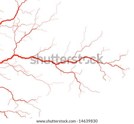 Editable vector illustration of red blood vessels