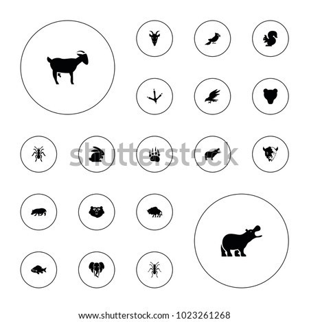 Editable vector wild icons: animal paw, bear, hippopotamus, fish, footprint of  icobird, ant, goat, rabbit, eagle, buffalo, squirrel, parrot on white background.