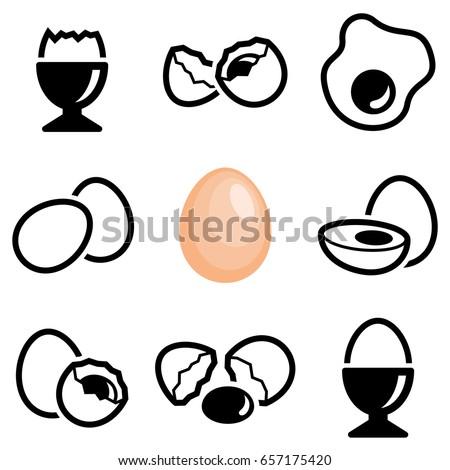 egg icon collection   vector