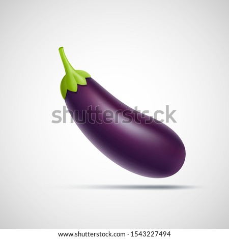 Eggplant icon isolated on a white background. Ripe juicy vegetable. Vector illustration. Сток-фото ©
