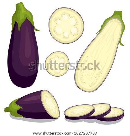 Eggplant set isolated on white background. Whole, slice, half of fresh aubergine. Vector ingredients for salad. Foto stock ©