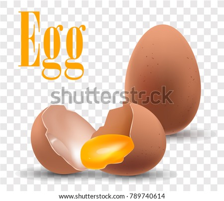 Eggs are on a transparent background , isolated, realistic vector illustration,3D