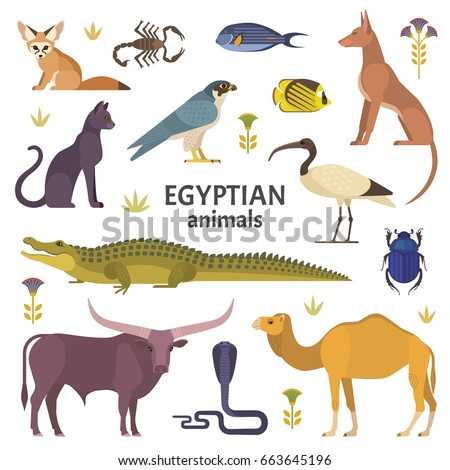 Egyptian animals. Vector illustration of African animals, such as camel, crocodile, buffalo, ibis, cat, Egyptian dog, and scorpio isolated on white.