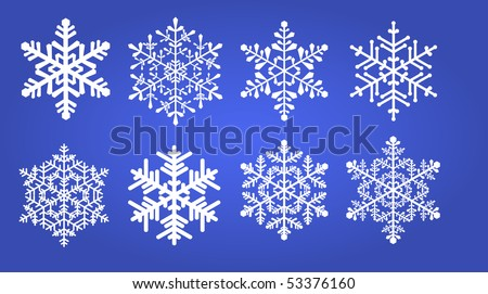 Eight various snowflakes on a blue background. Vector illustration.