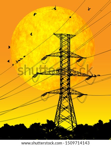electric power line with birds