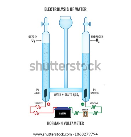 Electrolysis of Water. Labeled diagram to show the electrolysis of acidified water forming hydrogen and oxygen gases. Electrolysis of Water in Hofmann Voltameter.  Foto stock ©