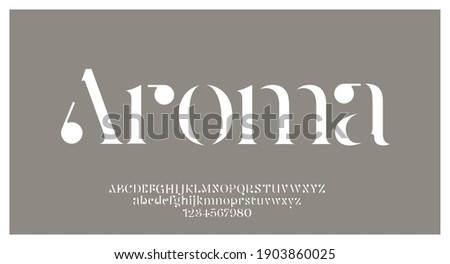 Elegant alphabet letters font and number. swoosh Classic Lettering Minimal Fashion Designs. Typography fonts regular uppercase and lowercase. vector illustration Photo stock ©
