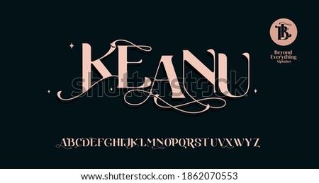 Elegant awesome alphabet letters font. unique serif font. Classic Lettering Minimal Fashion Designs. Typography fonts regular.vector illustration