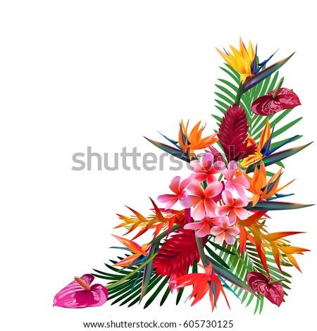 elegant floral vector