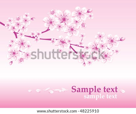 elegant spring background decorated with cherry blossoms - stock vector