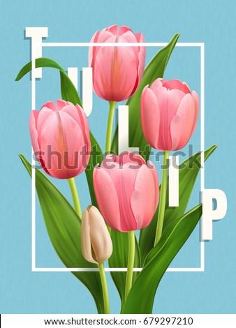 elegant tulip poster  flower