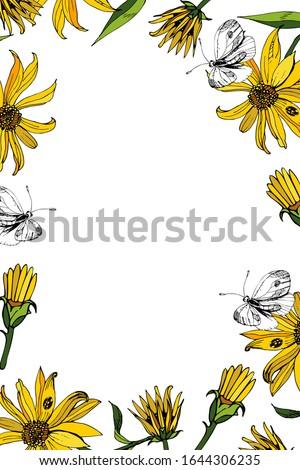 elegant vector floral frame