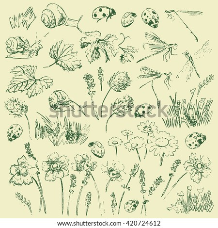 elements of nature kit vector